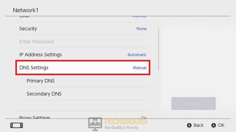 Choose manual DNS settings