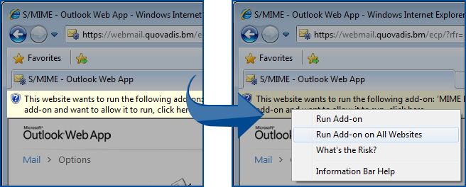 Run Add-on on All Websites to fix the content can't be displayed because the s/mime control isn't available error